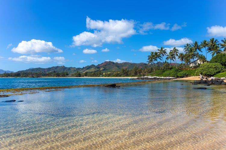 beach bay wailua bay