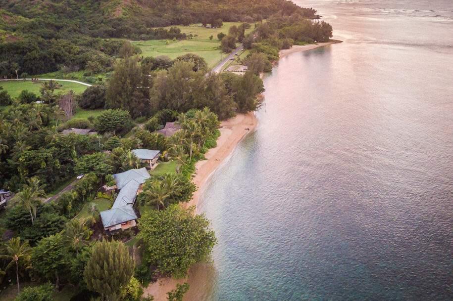 1 anini beachfront reef clm