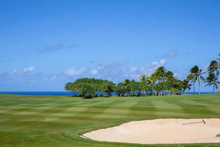24 golf-course