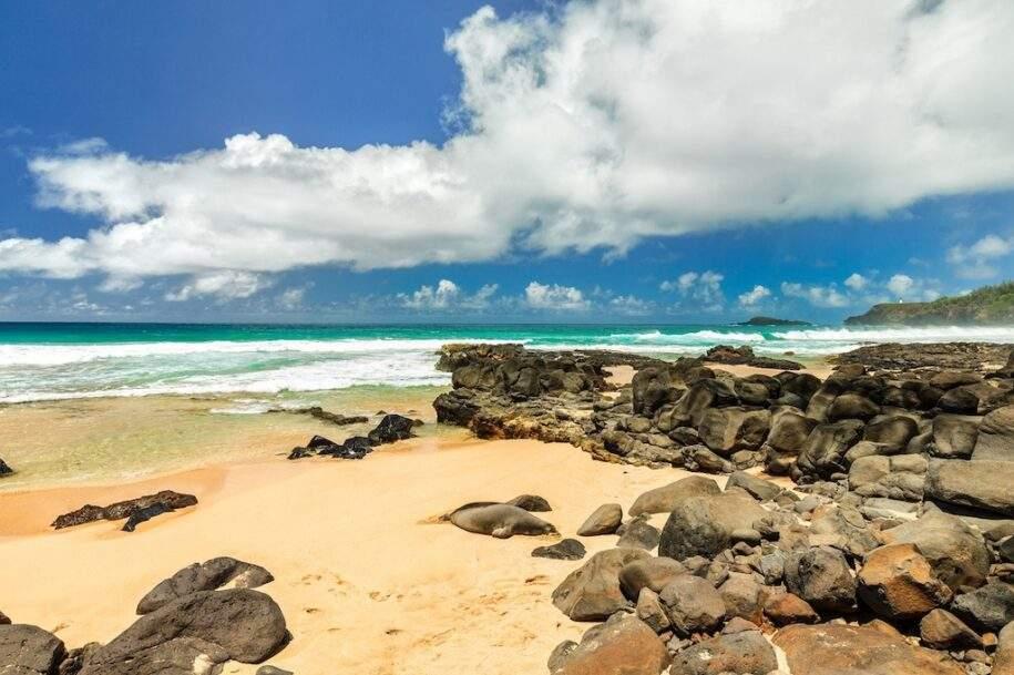 42 secret-beach-hideaway-41